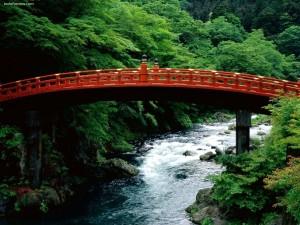 El Sagrado Puente del río Daiya Nikko (Japón)