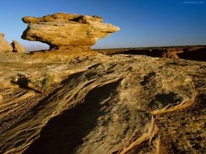 Postal: Cañón de Chelly (Arizona)