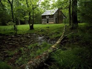Postal: Cabaña en Cades Cove, Parque Nacional de las Grandes Montañas Humeantes (Tennessee)