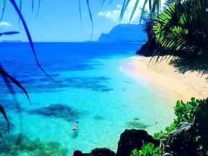 Postal: Buceando en una playa solitaria