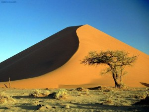 Postal: Dunas de arena en el Desierto de Namibia