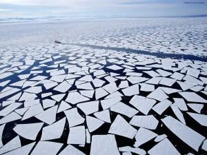Placas de hielo rotas
