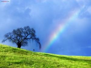 Postal: Columpio bajo el arcoíris