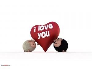 Ovejitas del amor