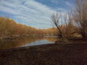 Aguas calmadas en el río Negro (Argentina)