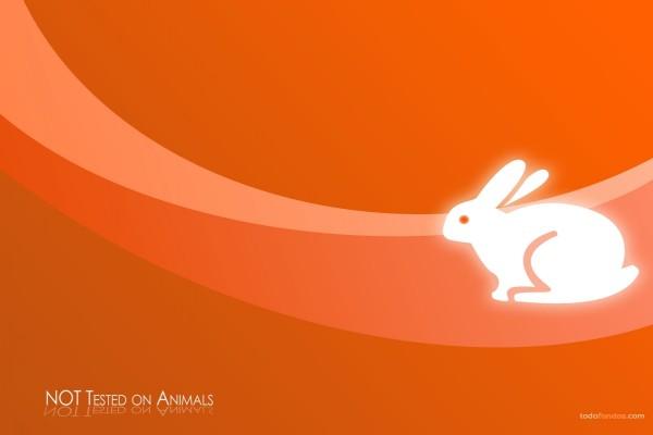 No probado en animales