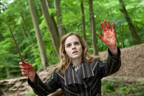 Hermione Granger en Harry Potter: Las reliquias de la muerte