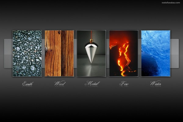 Los 5 elementos: tierra, madera, metal, fuego y agua