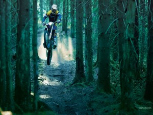 Postal: Motocross entre árboles