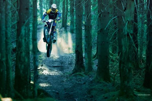 Motocross entre árboles