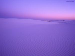 Postal: Desierto violáceo