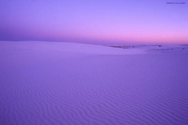 Desierto violáceo
