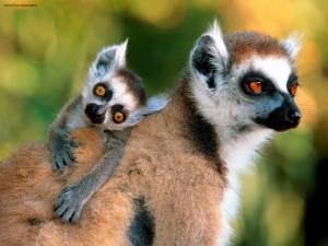 Postal: Lémures, madre e hijo