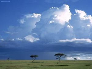 Grandes nubes sobre la Sabana