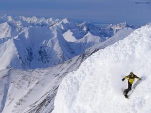 Postal: Snowboard sobre nieve virgen