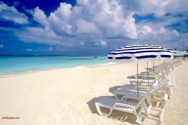 Hamacas a pie de playa