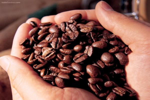 Un puñado de granos de café
