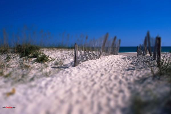 Camino de arena a la playa