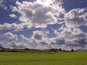 Nubes de algodón