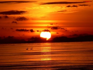 Postal: Sol tiñendo de rojo el cielo