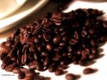 Granos de café tostado