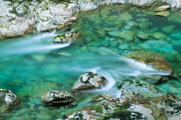 Aguas verdosas