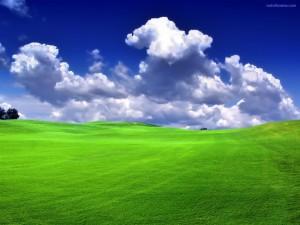 Nubes sobre una verde pradera
