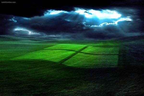 Logo de Windows sobre la hierba