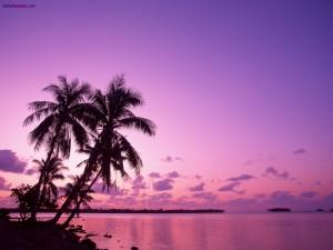 Postal: Cielo púrpura