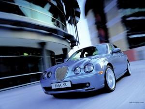 Postal: Jaguar azul