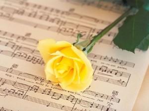 Postal: Rosa amarilla sobre partitura