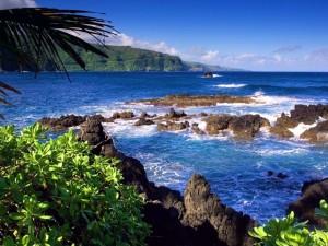 Postal: Arrecifes