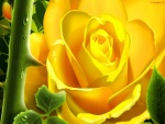 Rosa digital amarilla