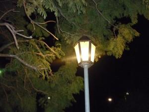 A la luz de la farola