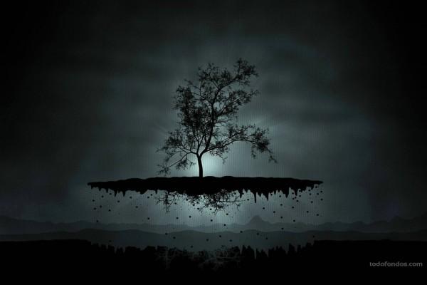 Árbol levitando
