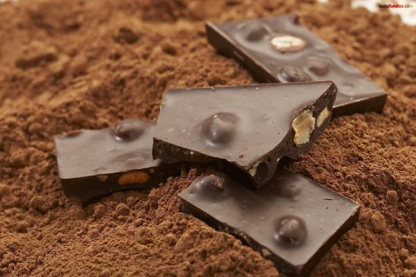 Chocolate con avellanas sobre chocolate en polvo