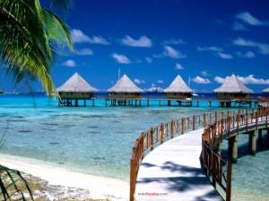 Postal: Vacaciones en el paraiso