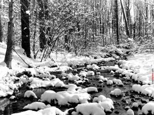 Río nevado