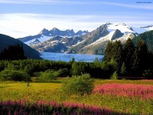 Prados y montañas