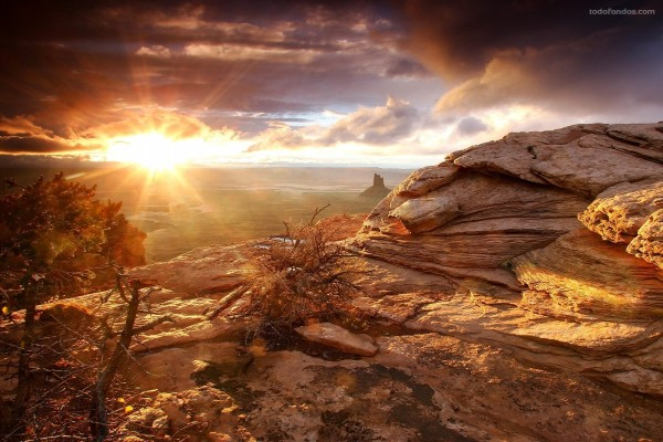 El Sol brillando intenso sobre la línea del horizonte