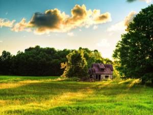 Postal: Cabaña en el campo