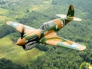 Avión de combate de la Segunda Guerra Mundial