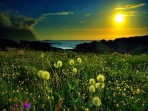 Luz amarilla del Sol