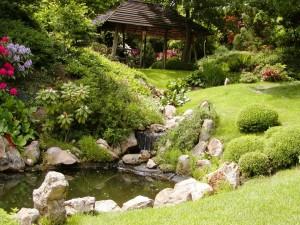 Pequeño estanque de jardín