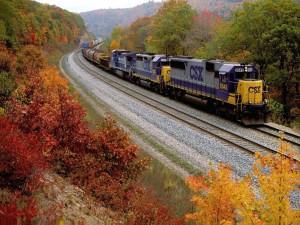 Postal: Tren de carga