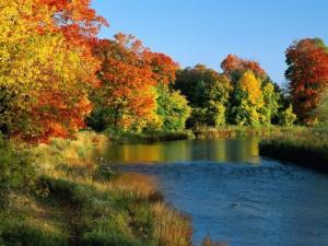 Postal: La vereda de un río
