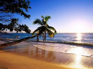 Postal: Playa de arena dorada
