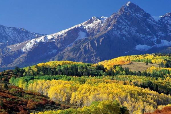 Árboles de colores al pie de las montañas