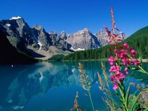 Postal: Un lago al pie de las montañas