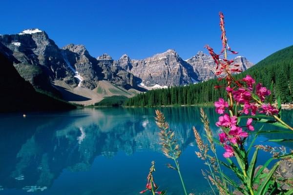 Un lago al pie de las montañas
